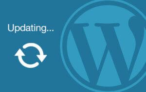 WordPress update screen with spinning wheel